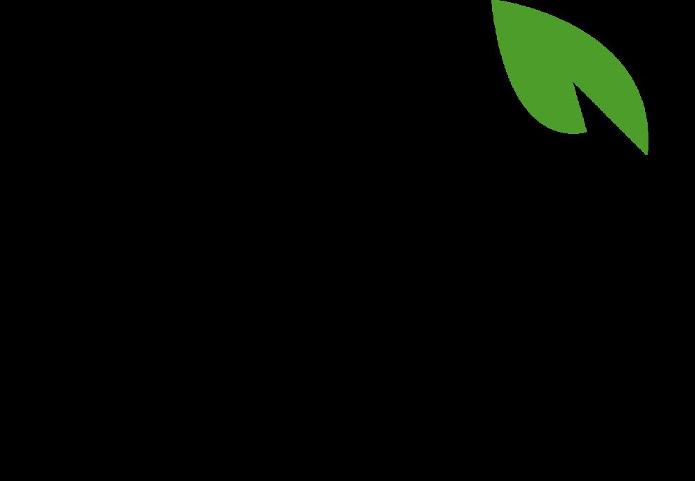 Copy of Bai Logo.png