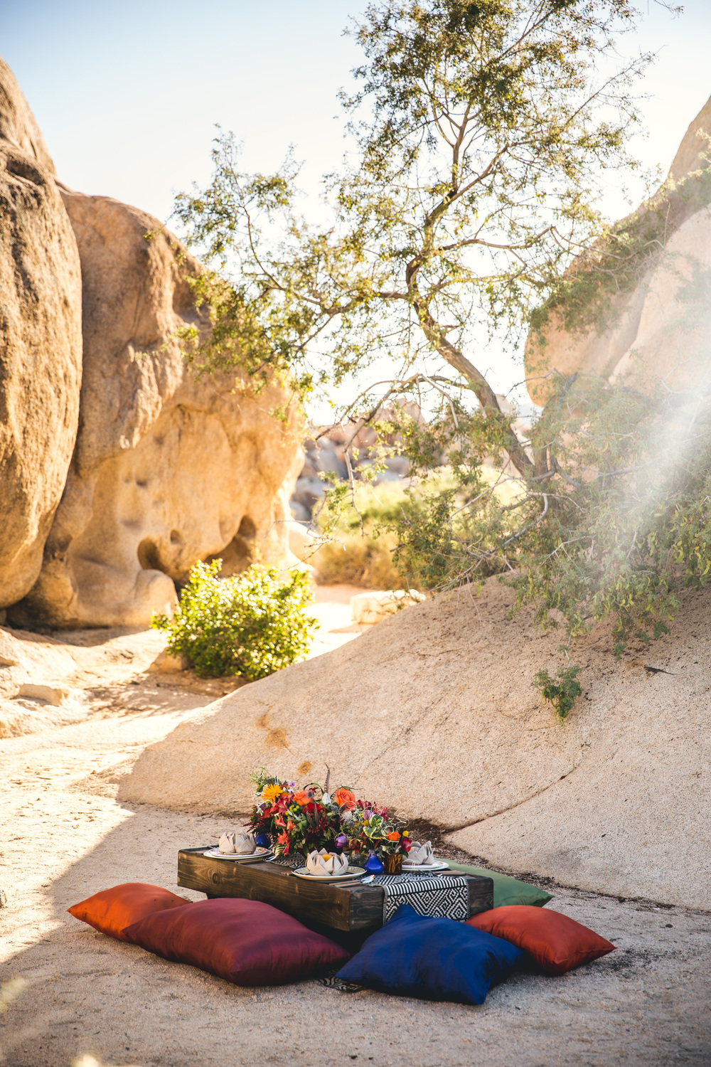 Joshua Tree Styled Shoot 00001.JPG