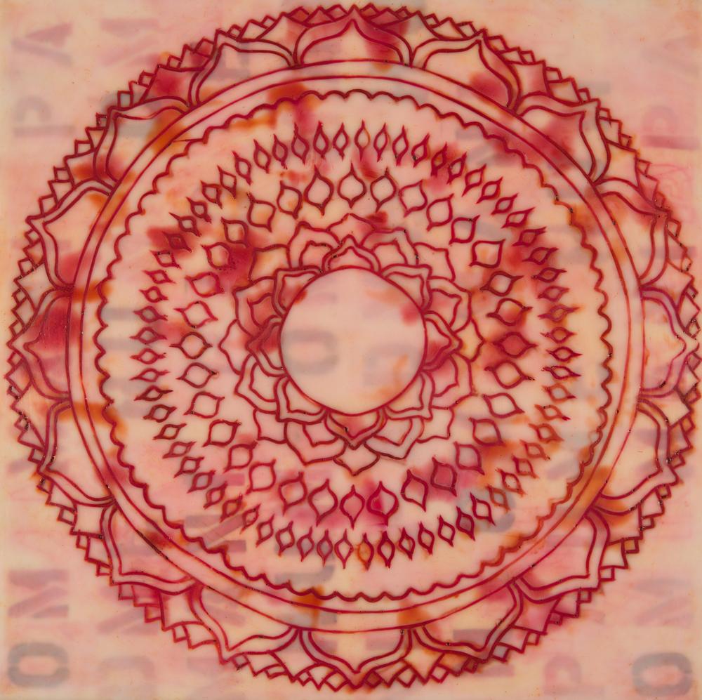 Lotus #8