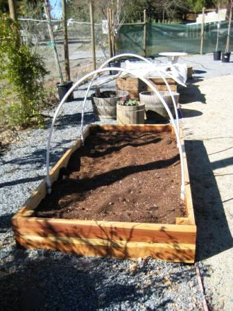 raised-bed.jpg