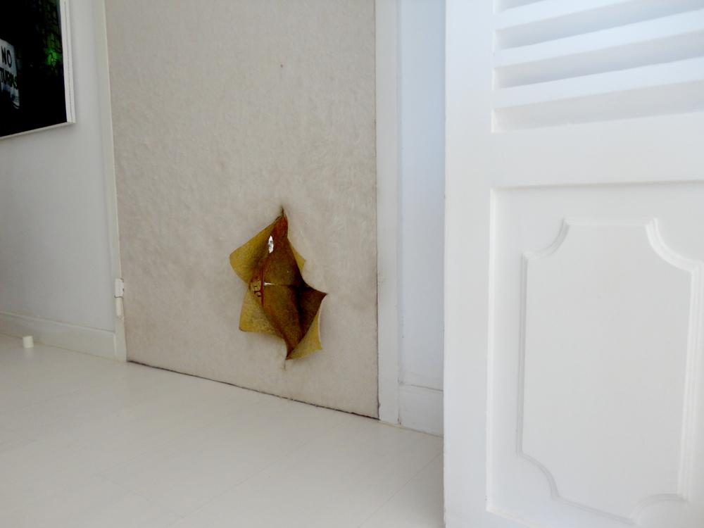 a porta que eu quis trazer para casa - é por aqui que a gataria passa para ir ou sair da cozinha.