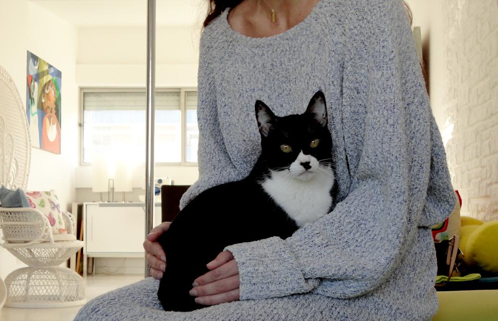 a princesa aqui é a Pindoim, uma gata meiga que gosta de festas e que dá turrinhas à sua dona.