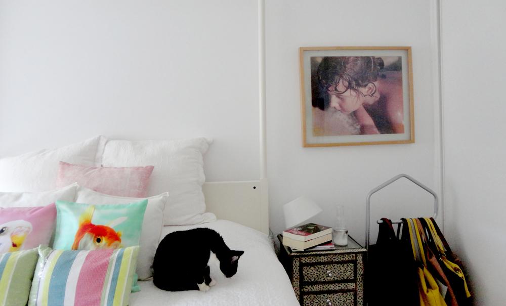 a visita à casa foi sempre com a companhia da gataria que ora pedia festas a mim ora à Inês...