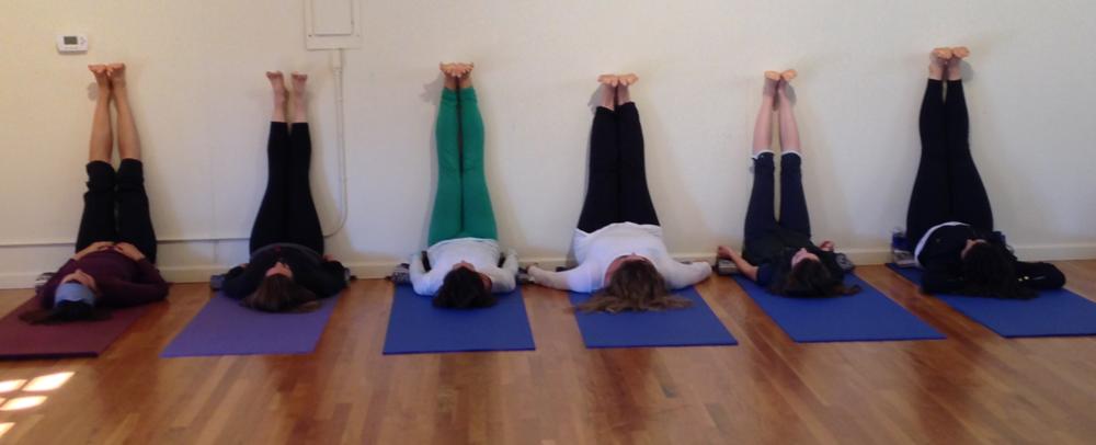 Yoga and Jewish Wisdom Cohort 1, Westerbeke Ranch