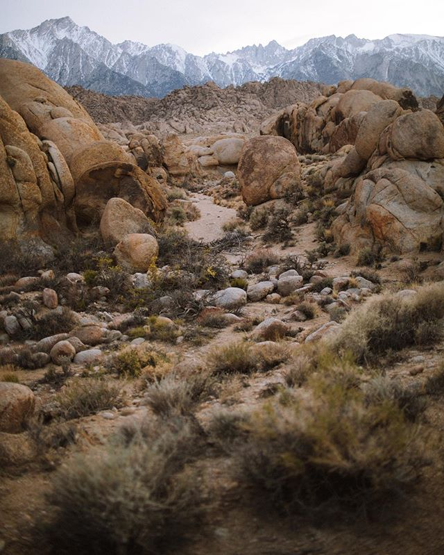 Alabama Hills feels like Joshua Tree but it's at the base of the Eastern Sierra. Also feels nothing like Alabama . . . #gloryglorytrip2018