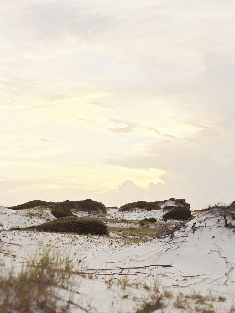 natural_arkansas_little_rock_grayton_beach_florist.jpg