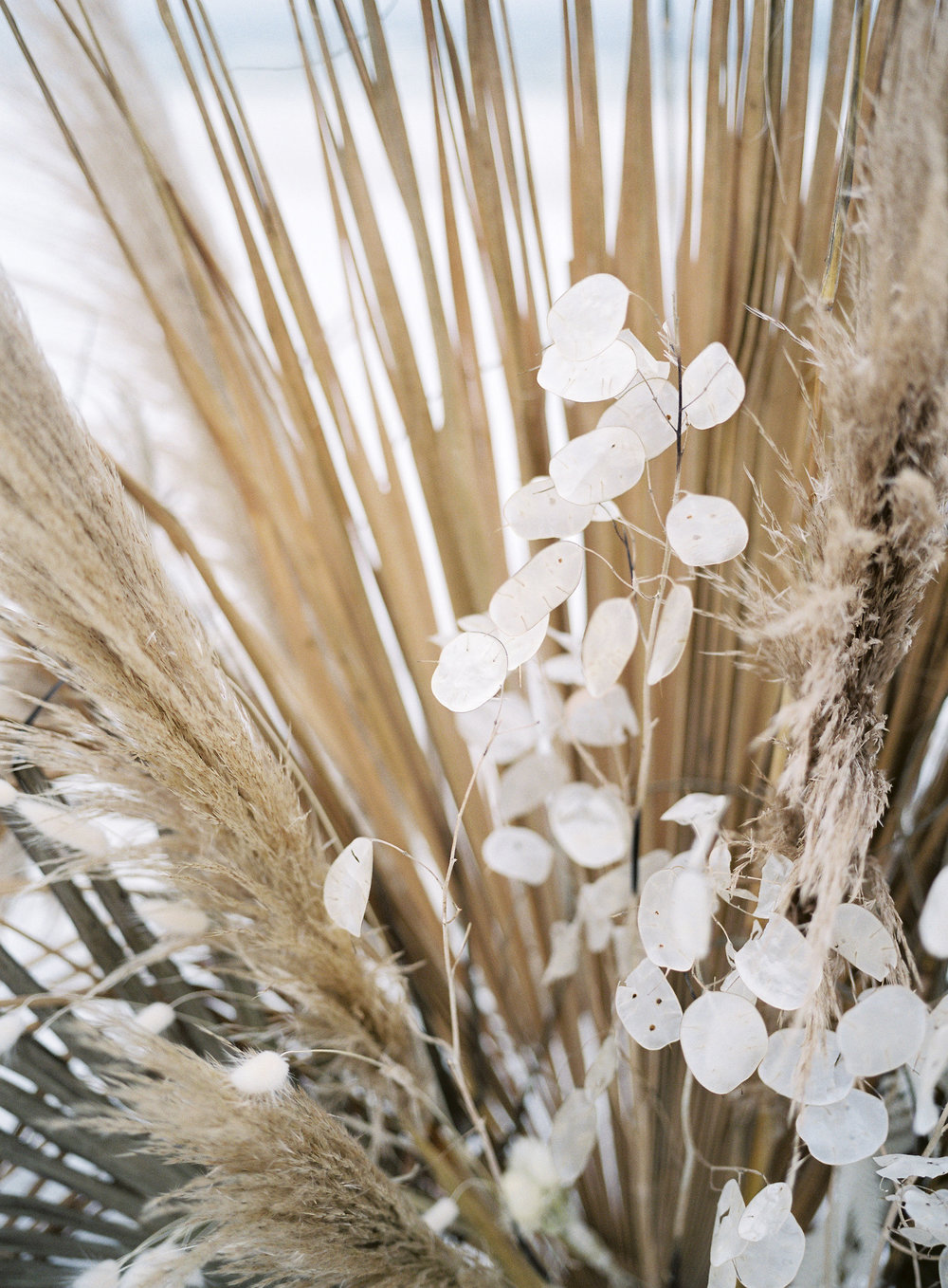 jessica-zimmerman-events-florida-editorial-dried-floral.jpg