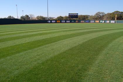 4 - natural grass sports fields kerrville tivy baseball field.jpg