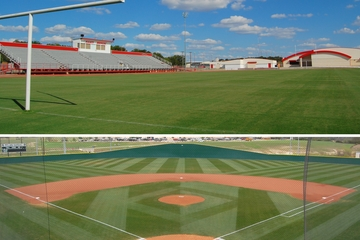 turf programs website thumb.jpg