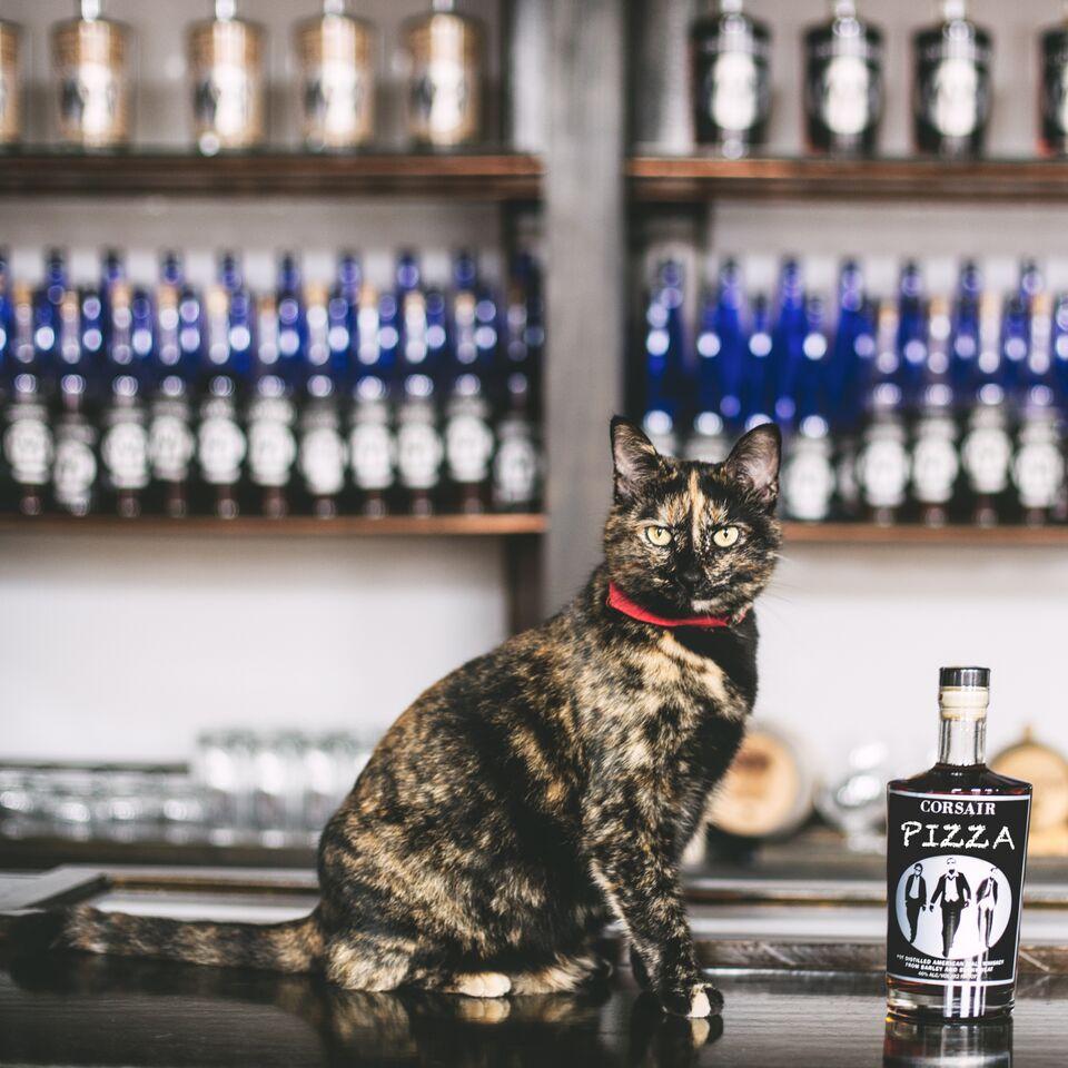 PIZZA CAT House Mouser Nashville Brewstillery