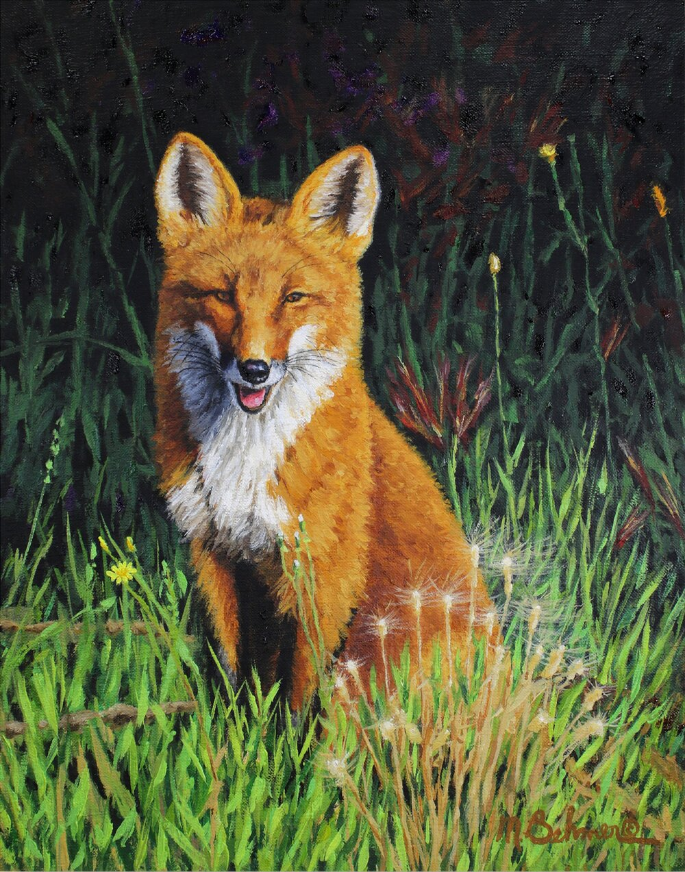 NEW: Red Fox In The Sun