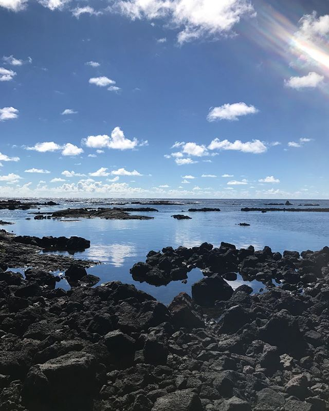I was the only human here at Kapoho tide pools this morning which was only scary before i put my head under the water and saw I had lots of fish friends to swim with.