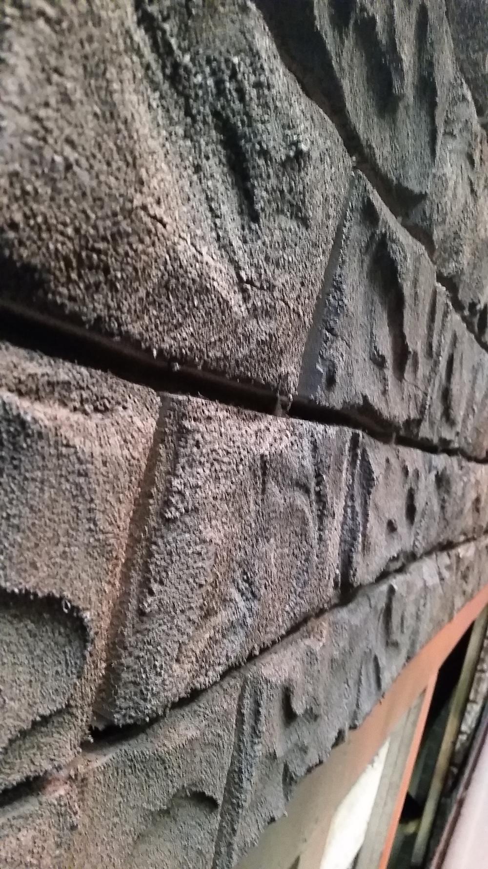 In Process Asylum Wall Paint