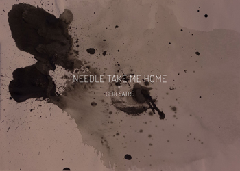 Needle-take-me-home-thumb-350-geir-satre-.jpg