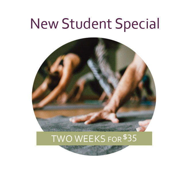 New Student Special 2 copy.jpg