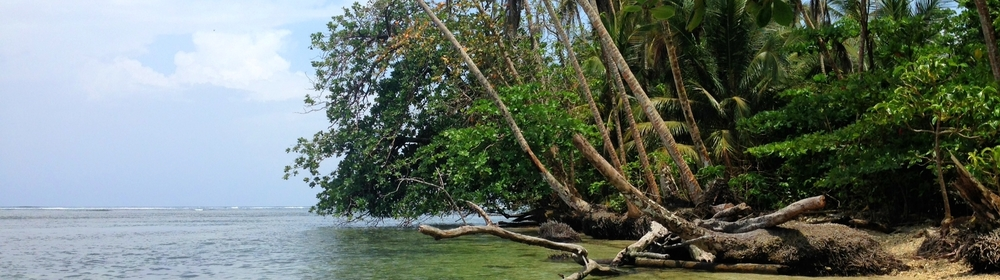 Paradise near Cahuita
