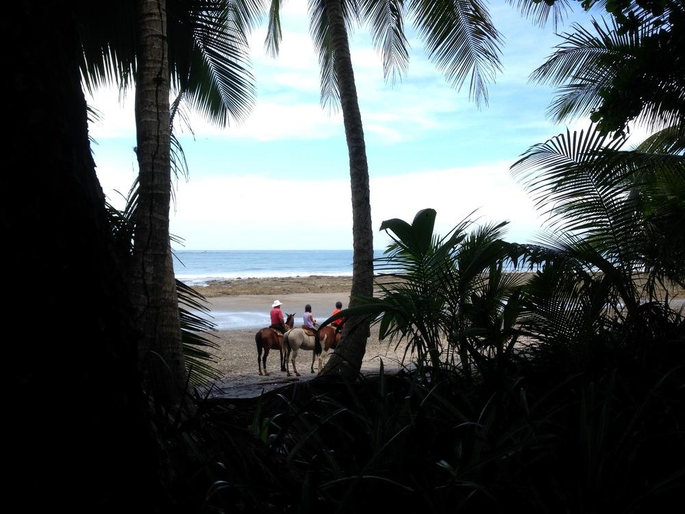 Chevaux àla plage,Puntarenas