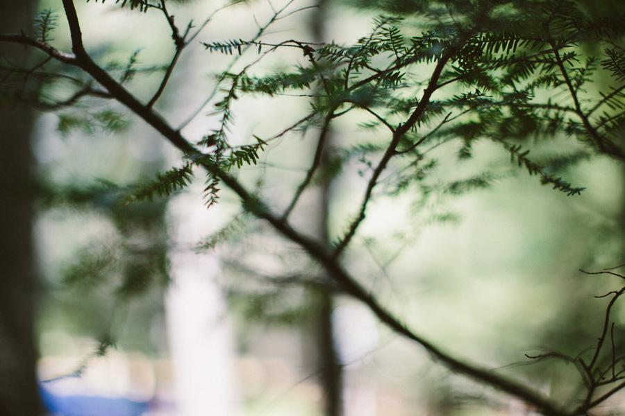 Whispering Pines Wedding
