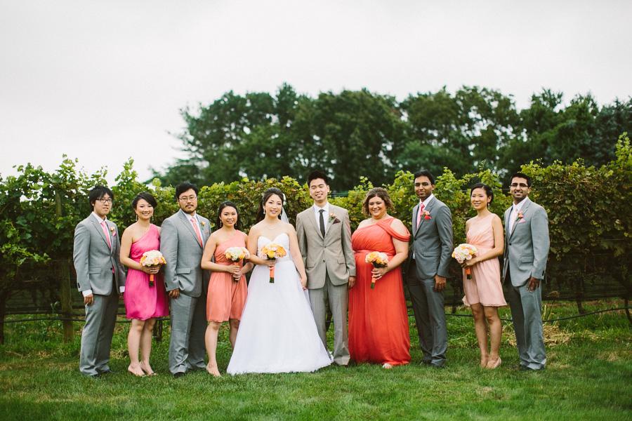 Vineyard Wedding Photography