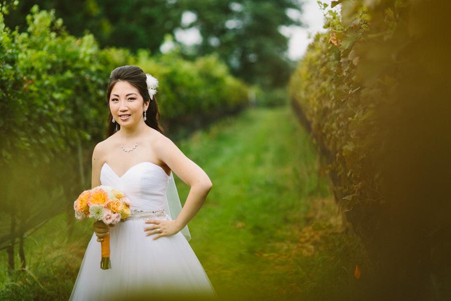 Vineyard Wedding Photographer