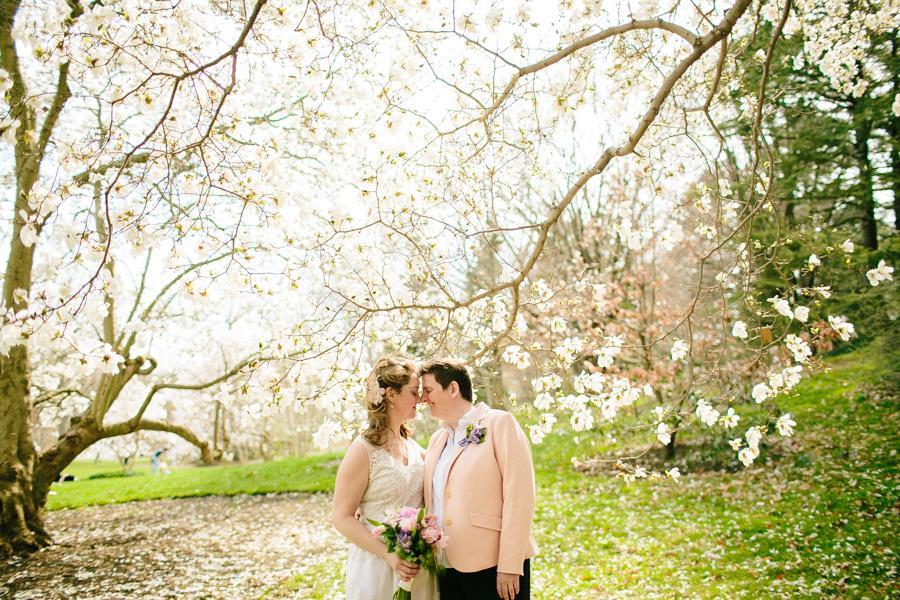 018-arnold-arboretum-elopement.jpg