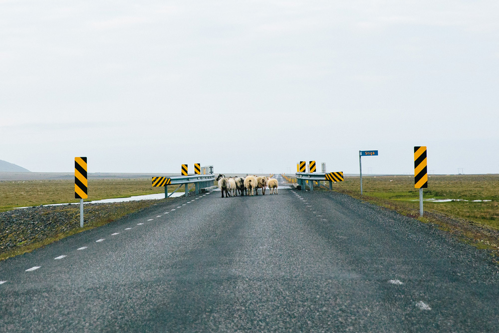 024-iceland-ring-road.jpg