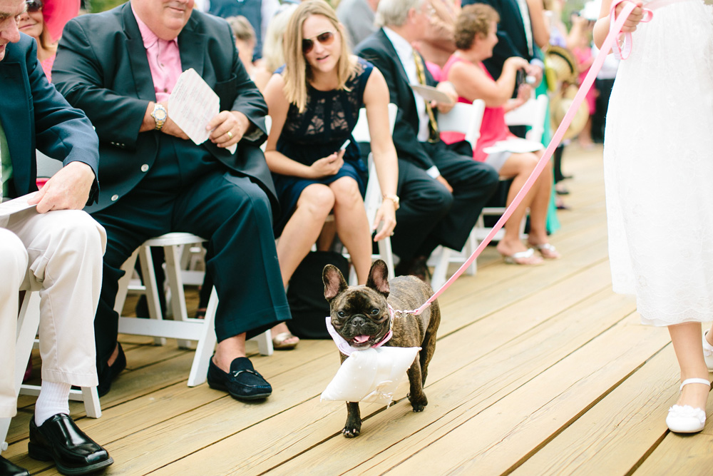 018-dog-ring-bearer.jpg