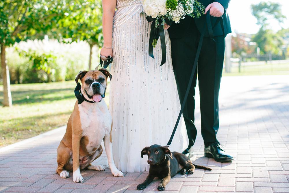 019-norwich-free-academy-wedding-photography.jpg