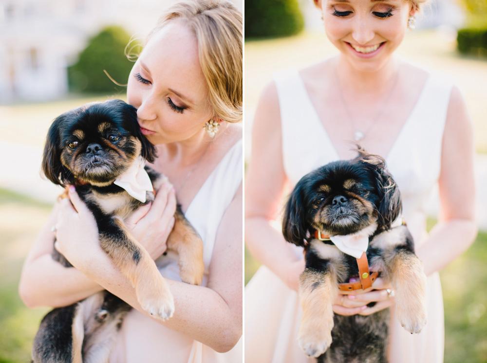 028-wedding-dog.jpg