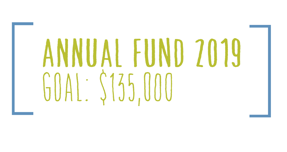 Annual Fund 2019.png