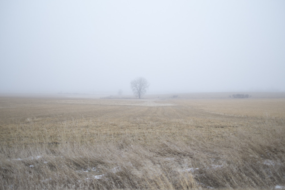(This must be the place) [December, 2014; Brookings, SD]