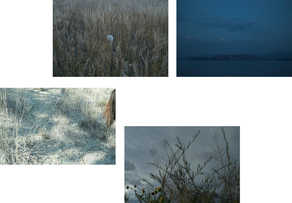 Variations on Loss [October, 2014; Montana]