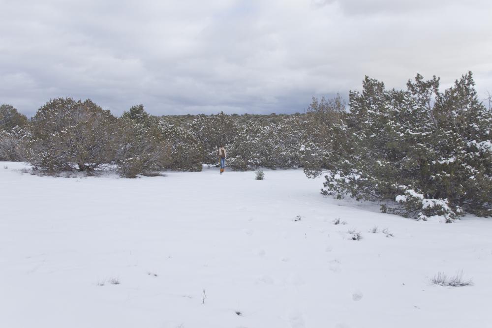 [December, 2012; Santa Fe, NM]
