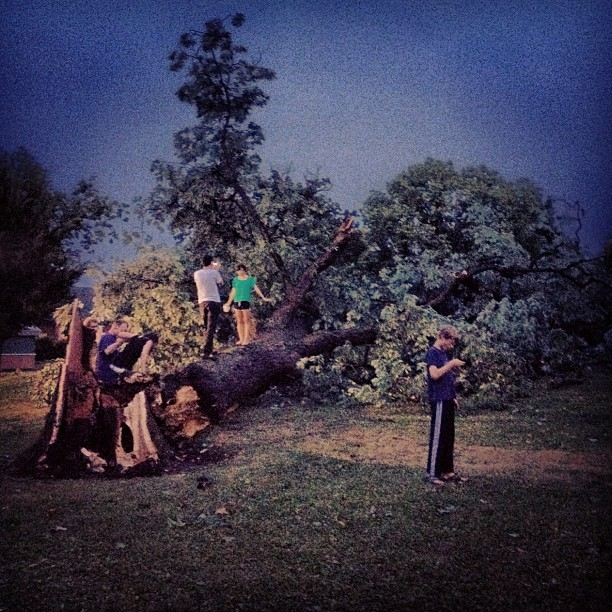 After the storm; Schiller Park, Columbus, OH (Taken with  Instagram )