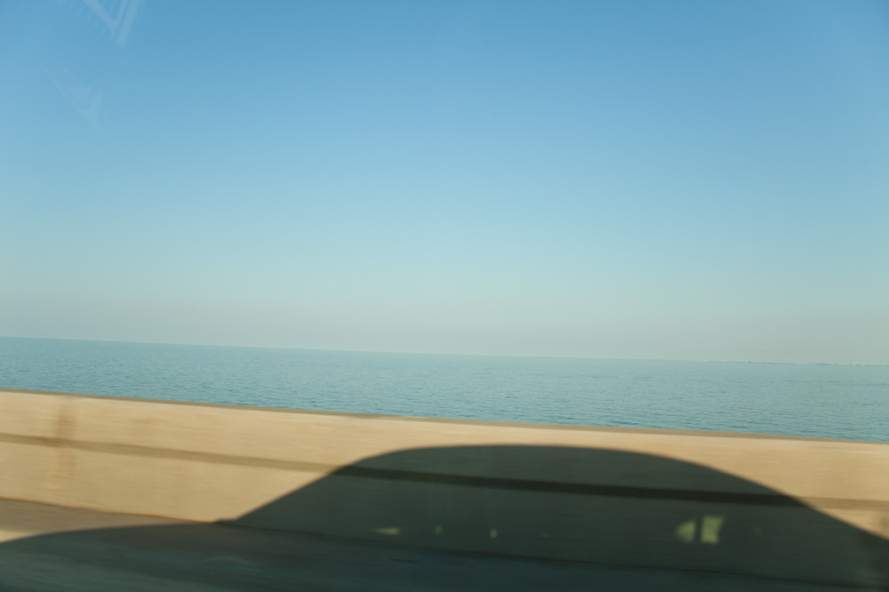 Today I would very much like to be here again, please.    [from   Scape  ;  September, 2011; Lake Pontchartrain, LA]