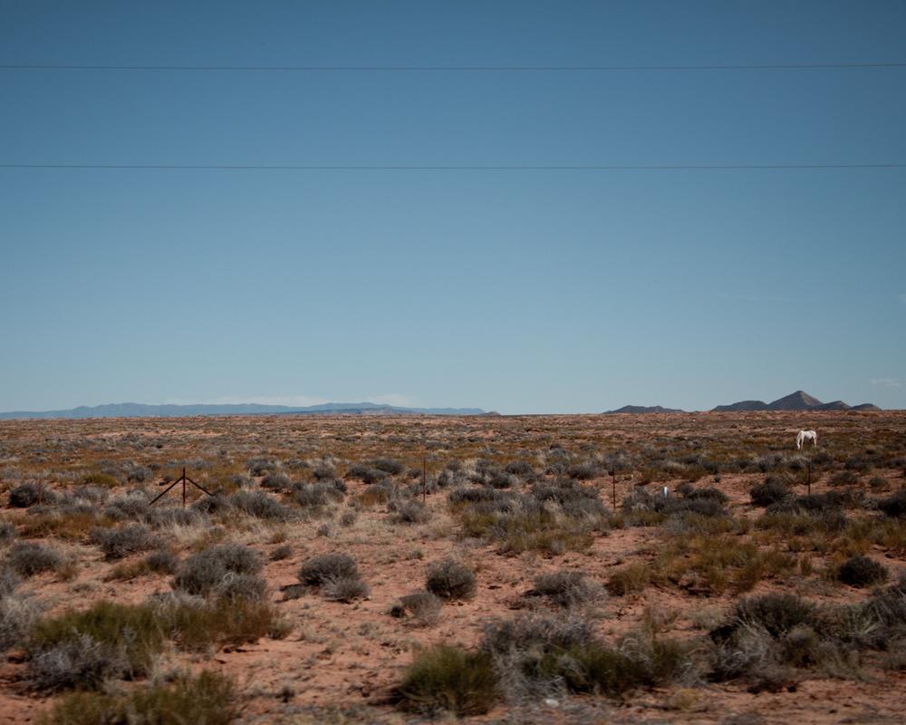 White horse, Utah [from the archives; September, 2011; somewhere in Utah]