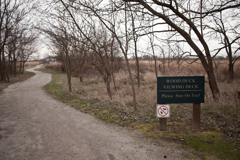 Wood Duck Viewing Deck (no cats or dogs allowed) [December, 2011; Pickerington Ponds Metro Park, OH]