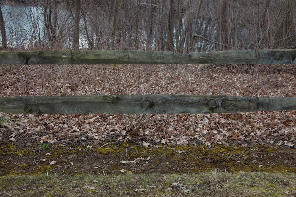 A fence, some textures, a few colors, and some lines   [February 18, 2012; Sharon Woods Metro Park, OH]