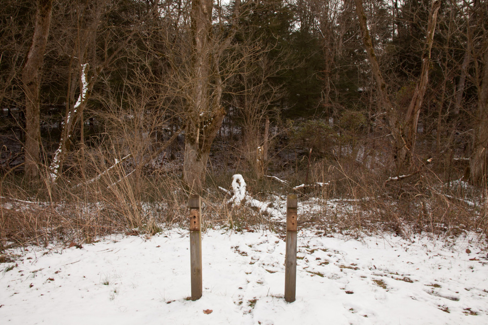 If you look, it's almost like the snowy branch is a knot being tied between the two poles. This will be my photo representative of Valentine's Day. Happy day, ya'll.   [February 13, 2012; Clear Creek Metro Park, OH]