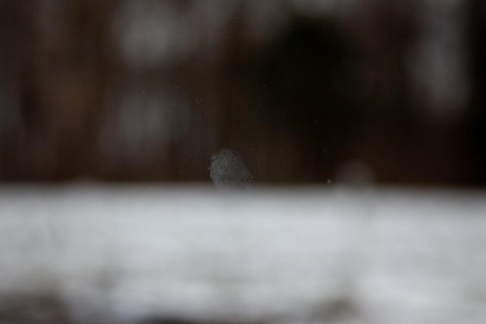Fingerprint/landscape No. 2    [February 10, 2012; Somewhere in Pennsylvania]