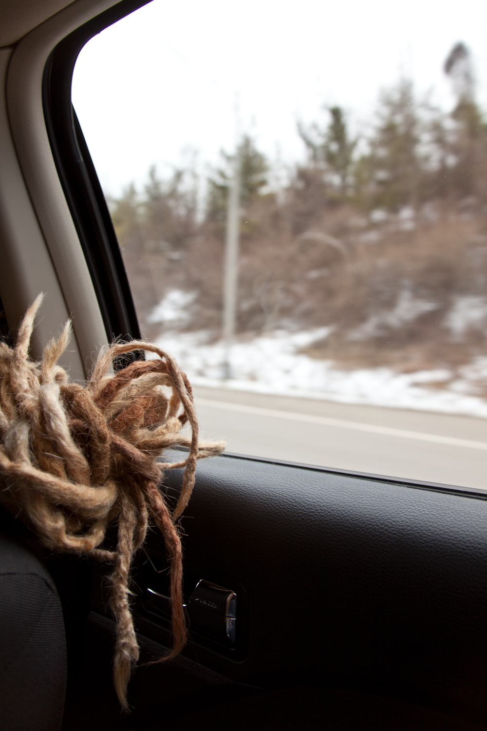 Hair/landscape [February 10, 2012; Somewhere in Ohio]
