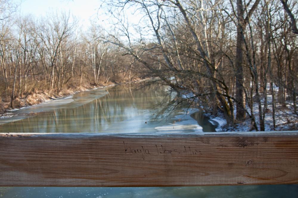 I like it too. [January 15, 2012; Prairie Oaks Metro Park, OH]