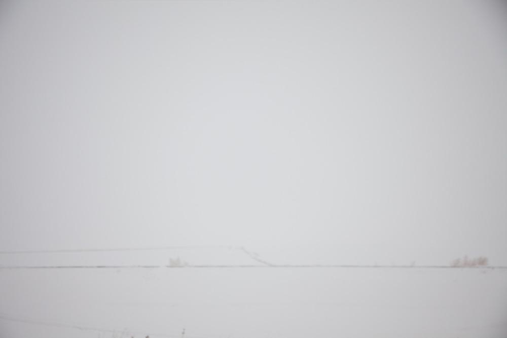 South Dakota Dreaming, December 2010   © Sarah Moore