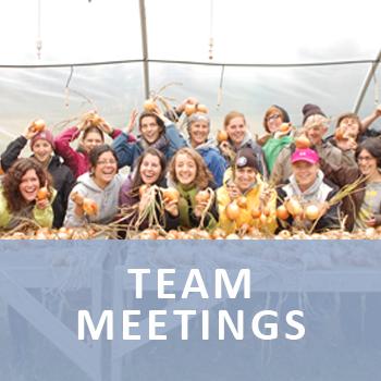TeamMeetingLink.png