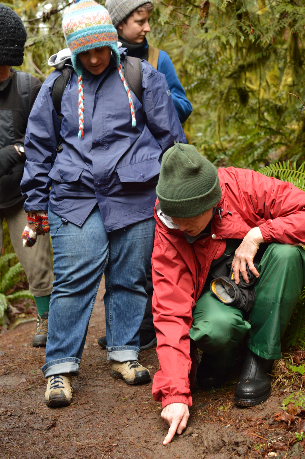 Learning about animal tracks in the Mt Hood Wilderness