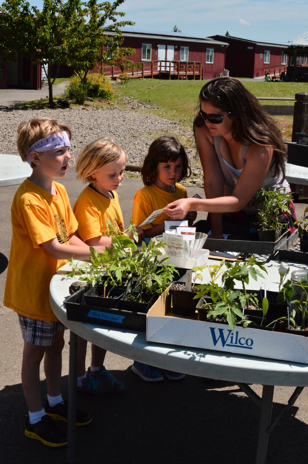 Kaci Rae helping students pick a plant at the Springwater School Plant Swap