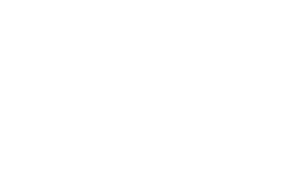 Skyward Accounting