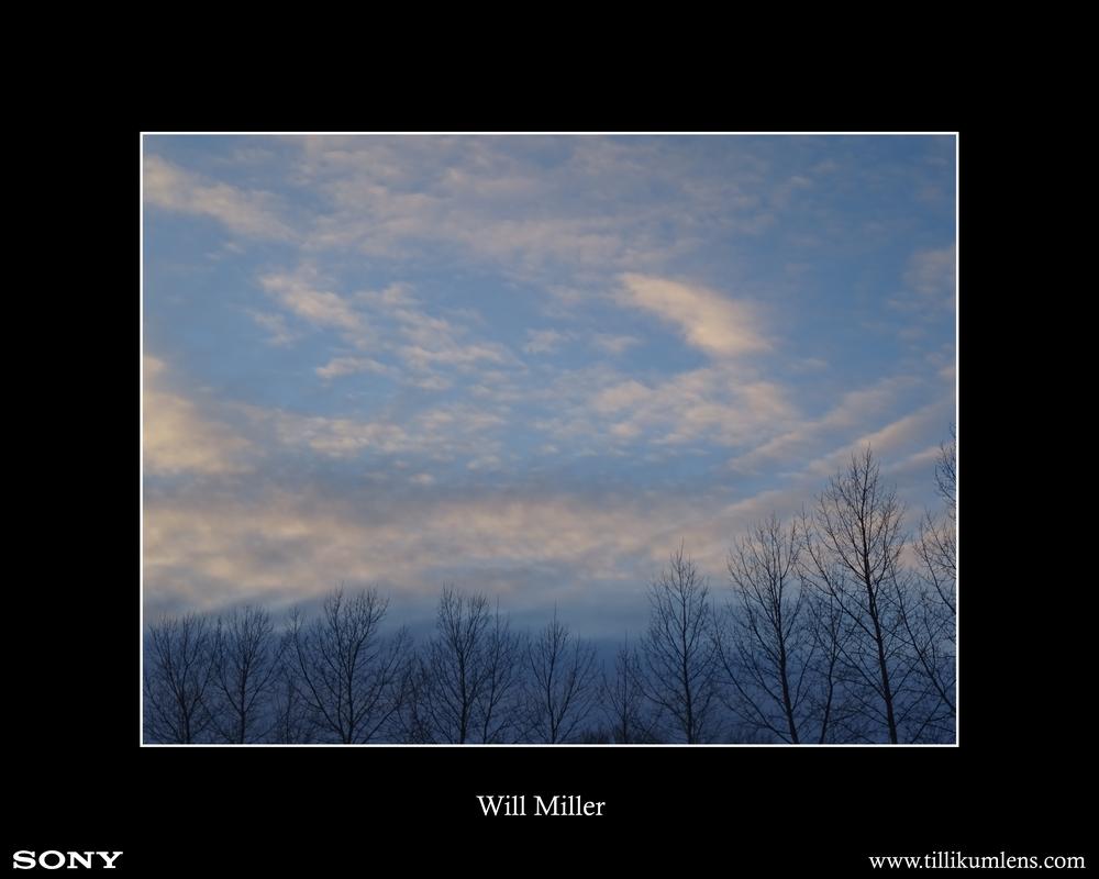 Will Miller.jpg