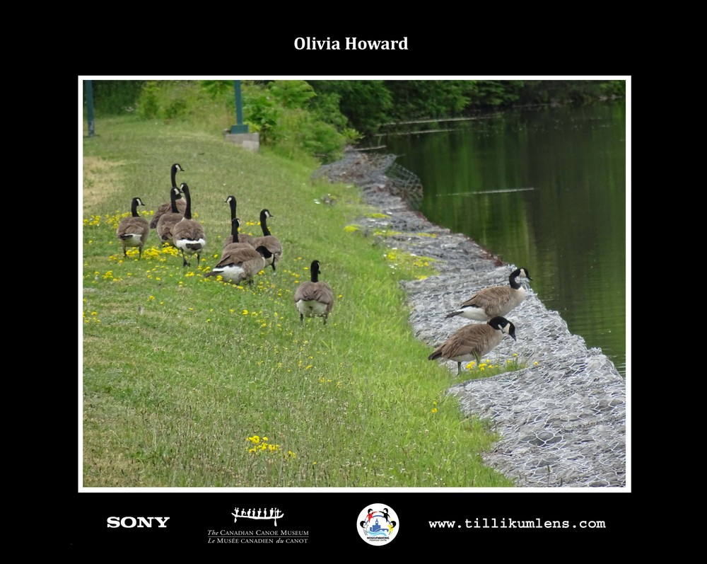 Olivia Howard 2.jpg