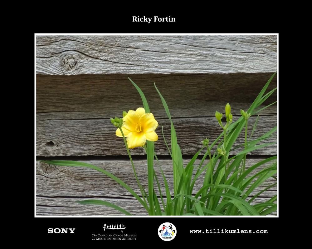 Ricky Fortin 1 Logo Centered.jpg